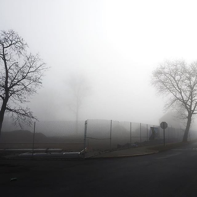Fog, .  —————————————     _shot          _feature     _streetview   _i_saw_in_nyc _nycity _great_shots_nyc _nyc
